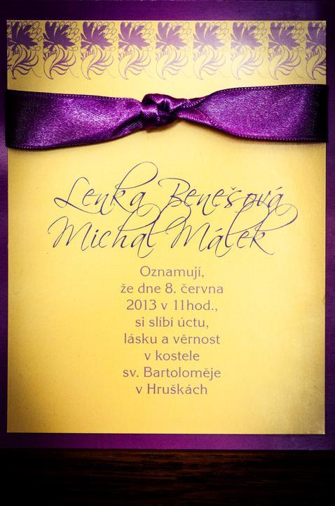 Lenka{{_AND_}}Michal - Obrázek č. 1