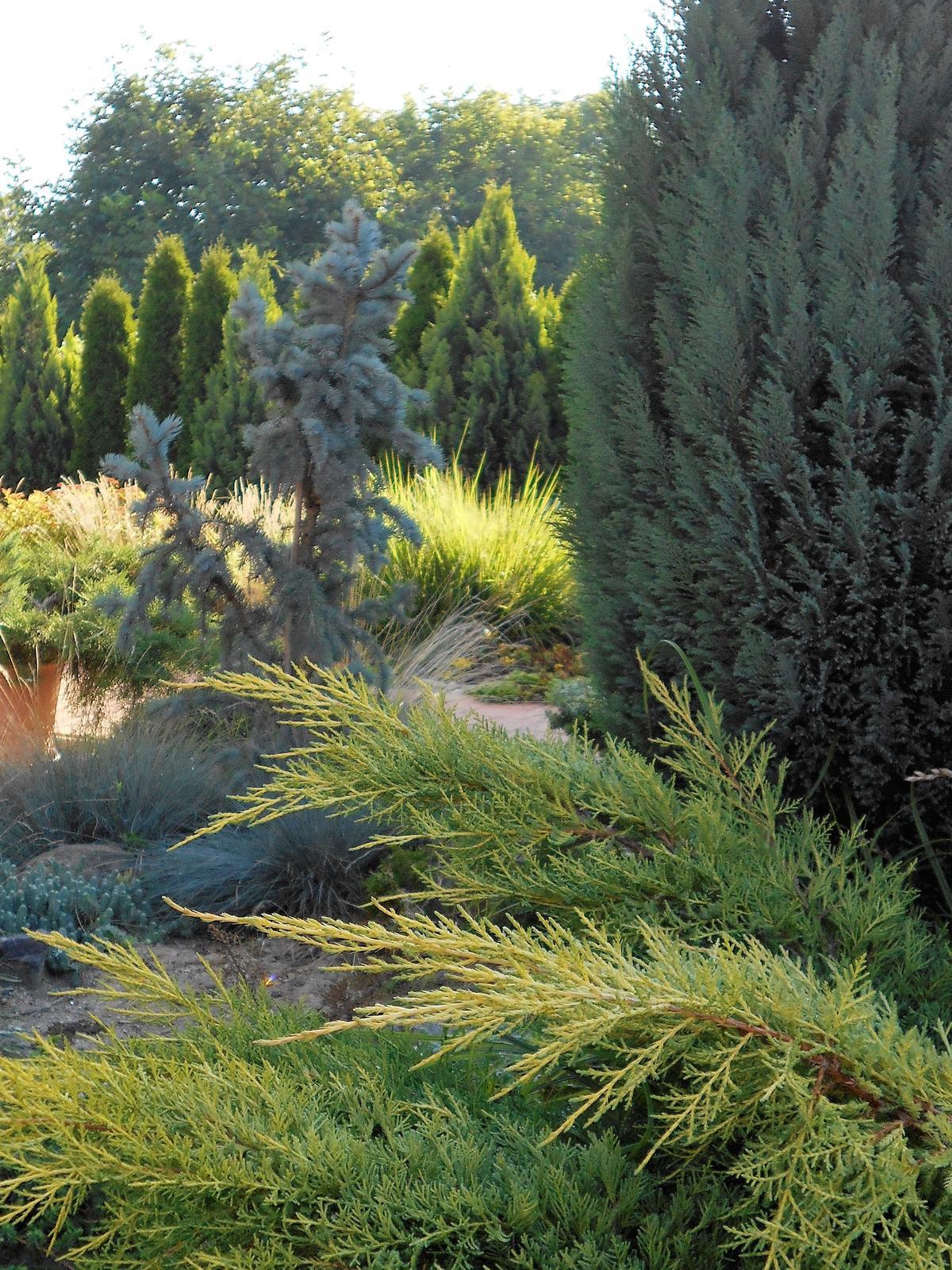 Zahradne..dvorkove.. - Obrázok č. 105
