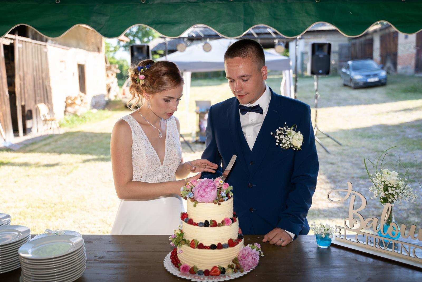 Svatby 2020 - Obrázek č. 6