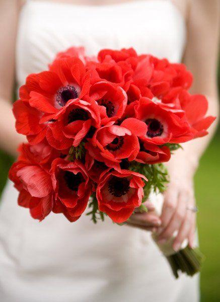 Když má svatba červenou! - Obrázek č. 5