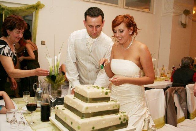 Deni{{_AND_}}Viki - Naša nádherná torta