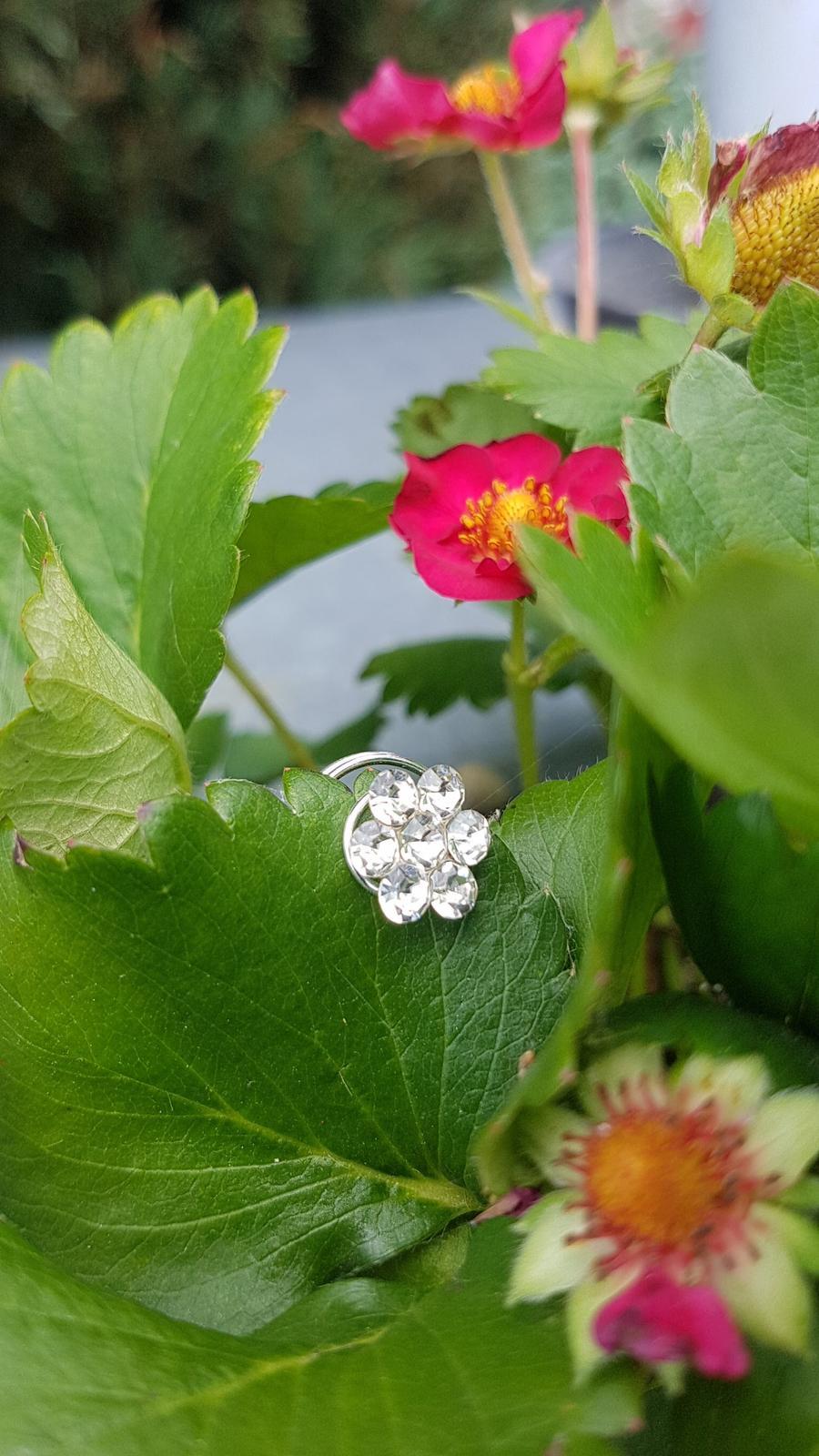 Květy z kamínků typ - šnečci - Obrázek č. 4