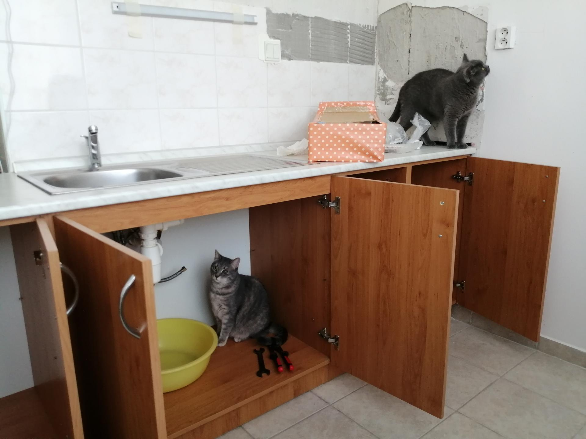 Kuchyňa - Pomáhame demontovať 😁