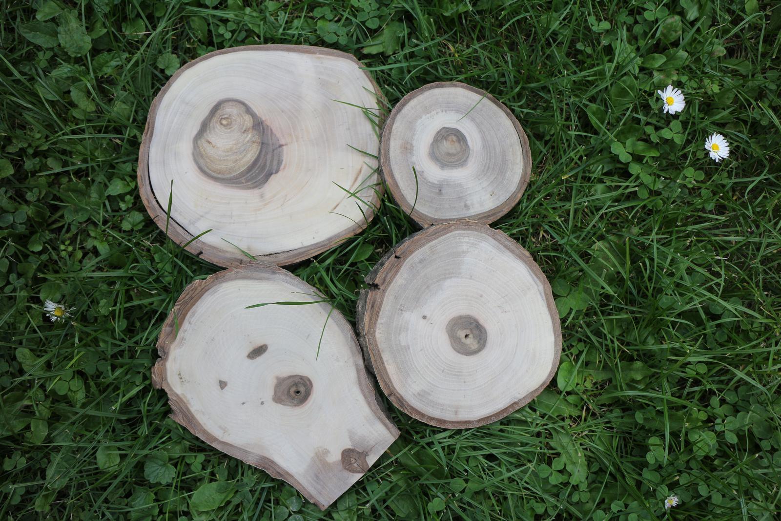 Dřevěné kulatiny - Obrázek č. 1