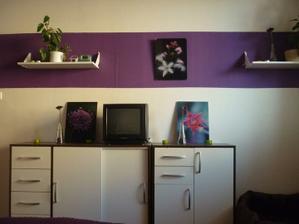 Televizka provizorní a vpravo dole pelíšek pro hafana