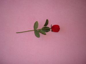 růže, ve které byl zásnubní prstýnek