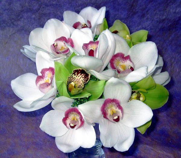 Kvetinky, výzdoba - Obrázok č. 27