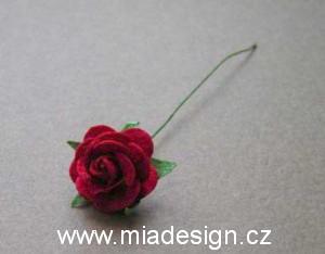 Cervena svatba 8. cervna 2006 - Do vlasu, nebo do korsaze s myrtou.