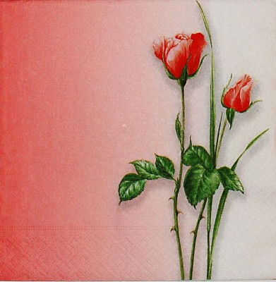 Cervena svatba 8. cervna 2006 - Krasne ubrousky, bohuzel kusovy prodej.