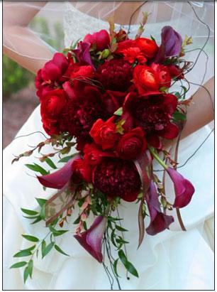 Cervena svatba 8. cervna 2006 - Zvlastni