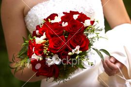 Cervena svatba 8. cervna 2006 - ukradeno od Zenusky, krasna :-)