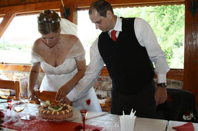 Alžběta Albrechtová{{_AND_}}Radek Červený - krajeni (bezlepkoveho) dortu