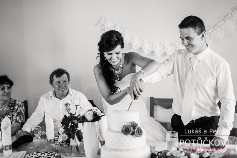 Svatba Mirky a Honzy na Domažlicku - Obrázek č. 86