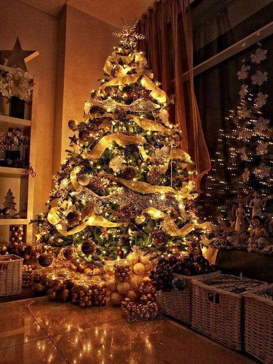 Pokojne Vianoce prajem všetkým :-) - Obrázok č. 1