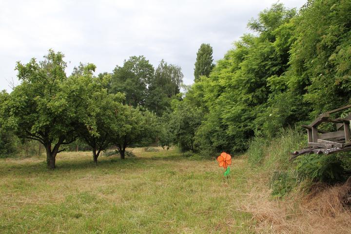 Nova 77 - Naša záhrada - takto sme kúpili náš pozemok