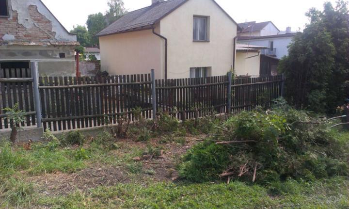 Nova 77 - susedia sa smejú, že pozemok sa nám stále zväčšuje :-) Výrub pokračuje