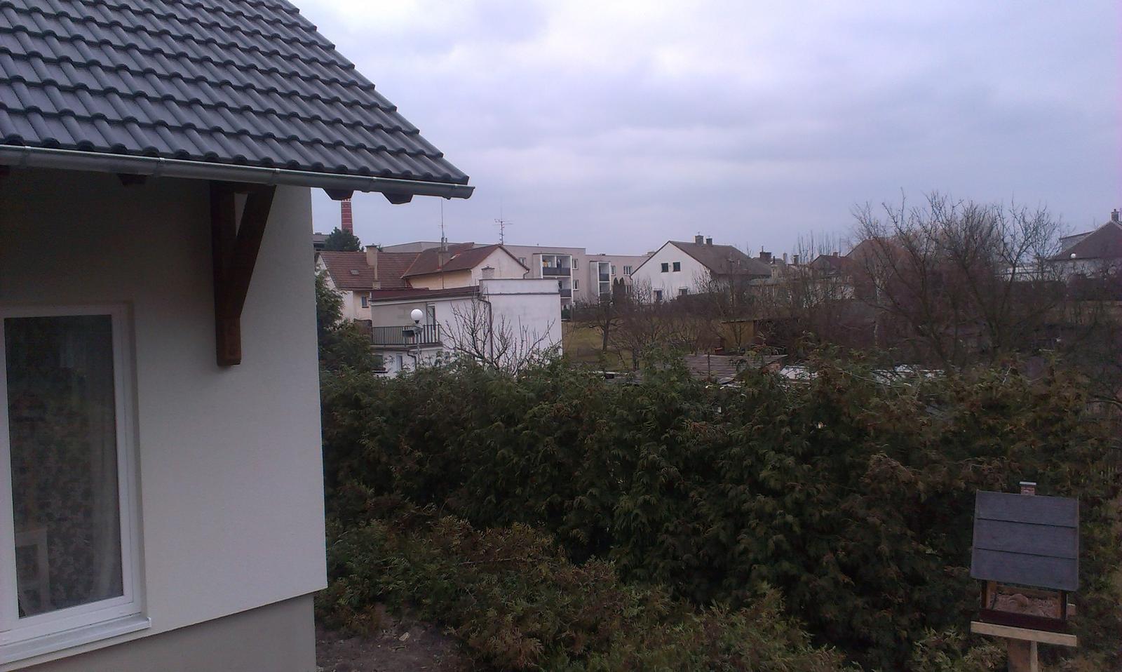Záhrada - Obrázek č. 3