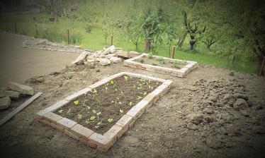 Kým rastie tráva starám sa o tohtoročnú úrodu - prvé priesady a bylinky zasadené