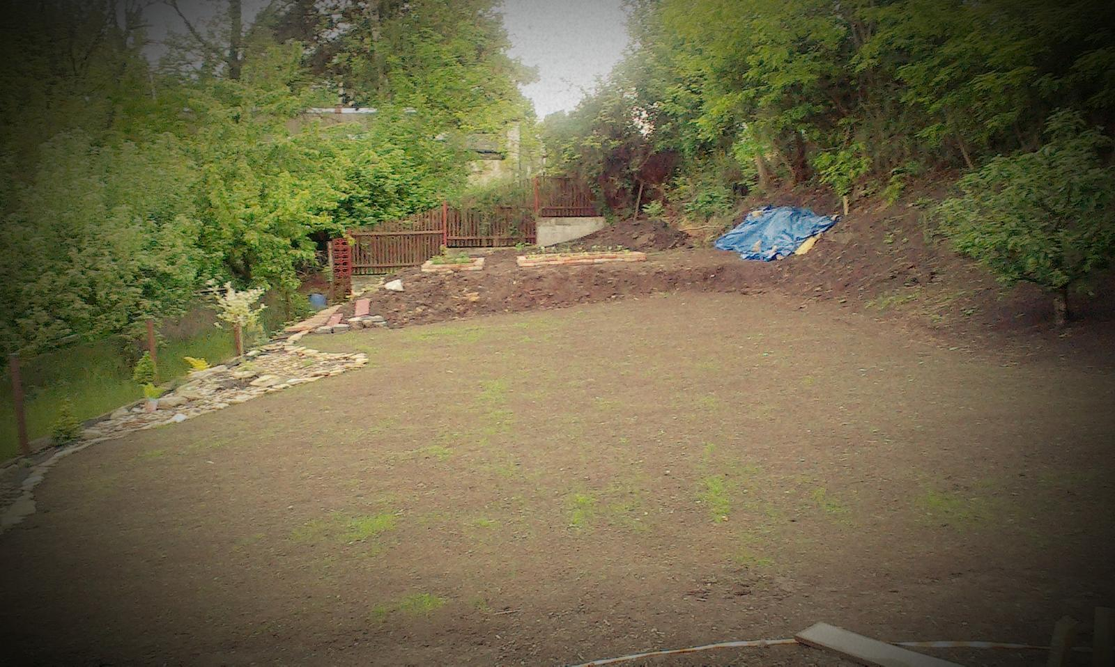 Záhrada - tráva po 12 dňoch