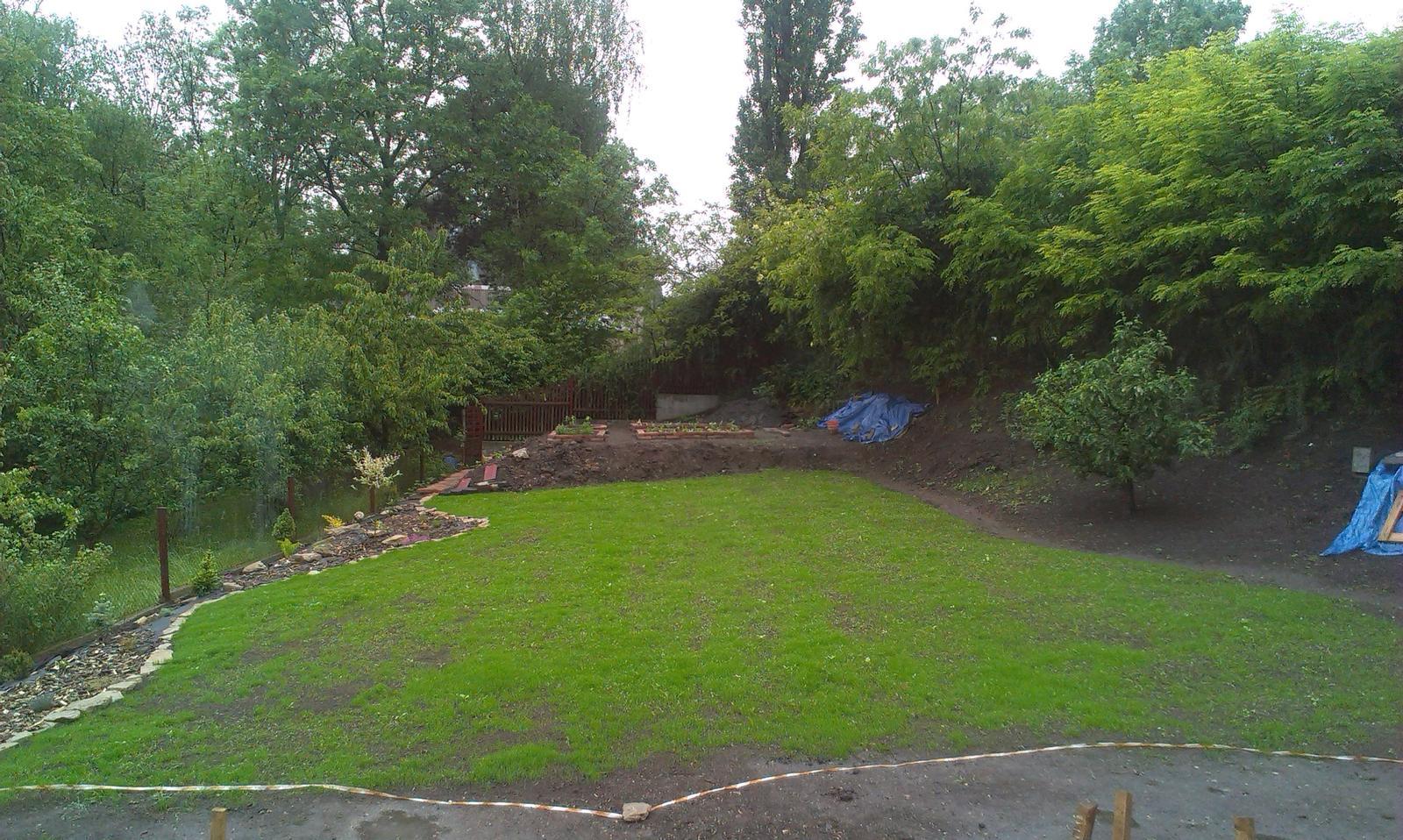 Záhrada - aktálny stav po 3 týždňoch