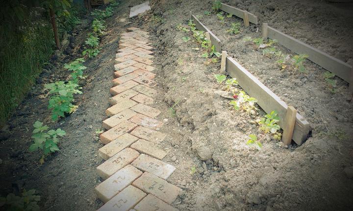 Cesta z mesta... alebo skor do útrob úžitkovej záhrady
