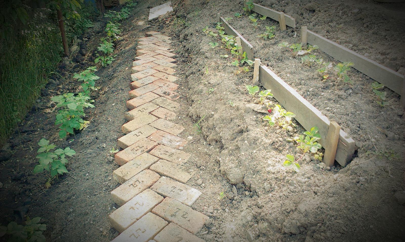 Záhrada - cesta z mesta... alebo skor do útrob úžitkovej záhrady