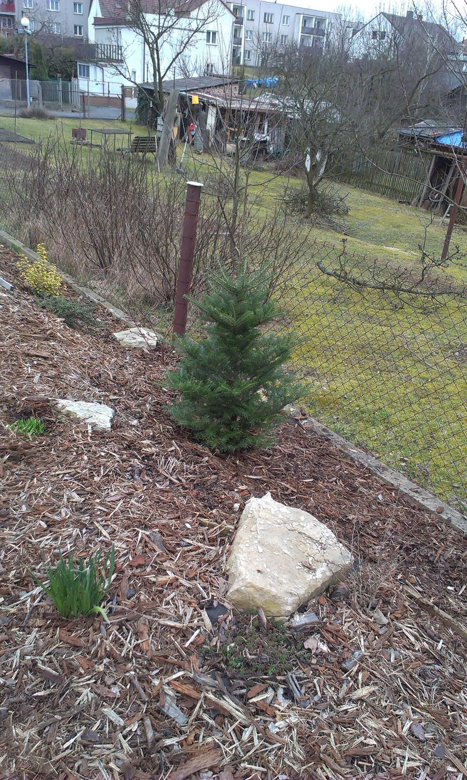Záhrada - povodne mal byť pred domom ale kto to má vydržať?? :-) Šup a je v skalke!