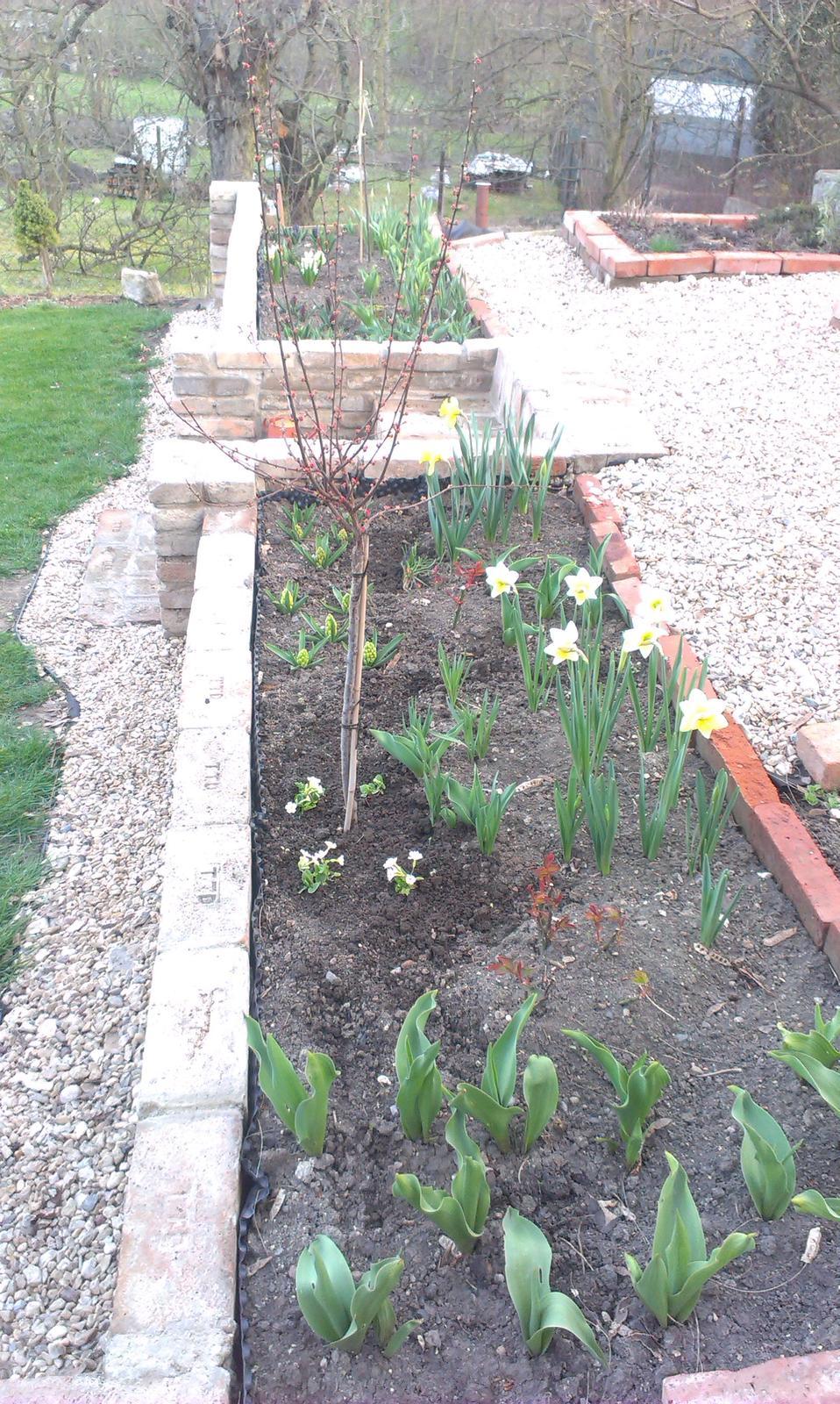 Záhrada - Obrázek č. 86