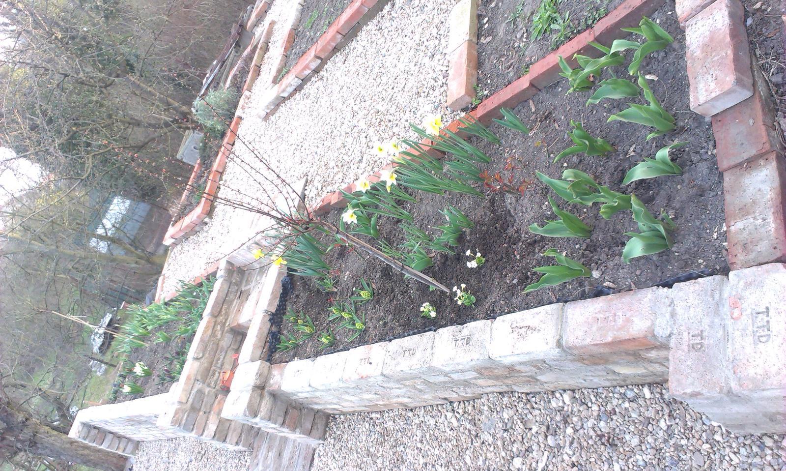 Záhrada - Obrázek č. 87