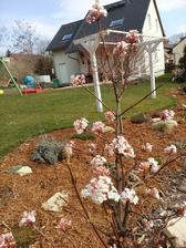 r.2016 - záhradná sezóna začína