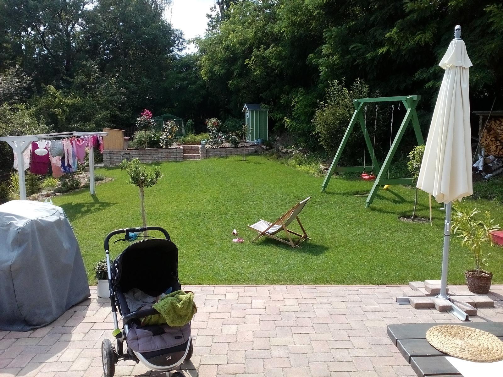 Záhrada - Pár krát zapršalo a k nám sa vrátil trávnik 😂