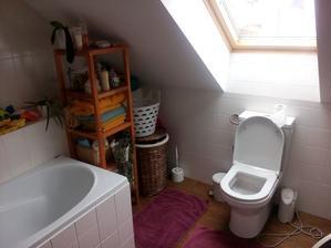 Povodna koupelna. Úplná katastrofa to zase nebola ale už to chcelo trošku ju dať do poriadku a zjednotit s celým domom. Hlavne ten regál priestor opticky rozděloval.