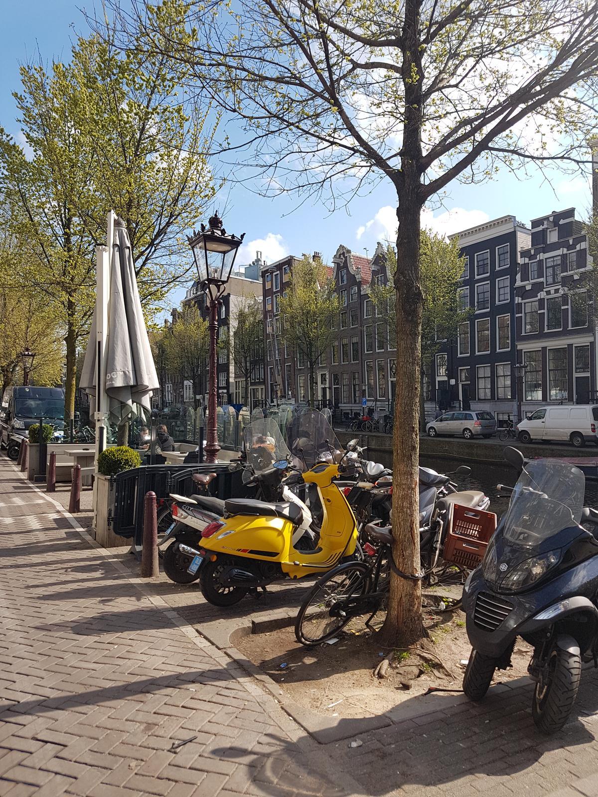 Holandsko - Obrázek č. 19
