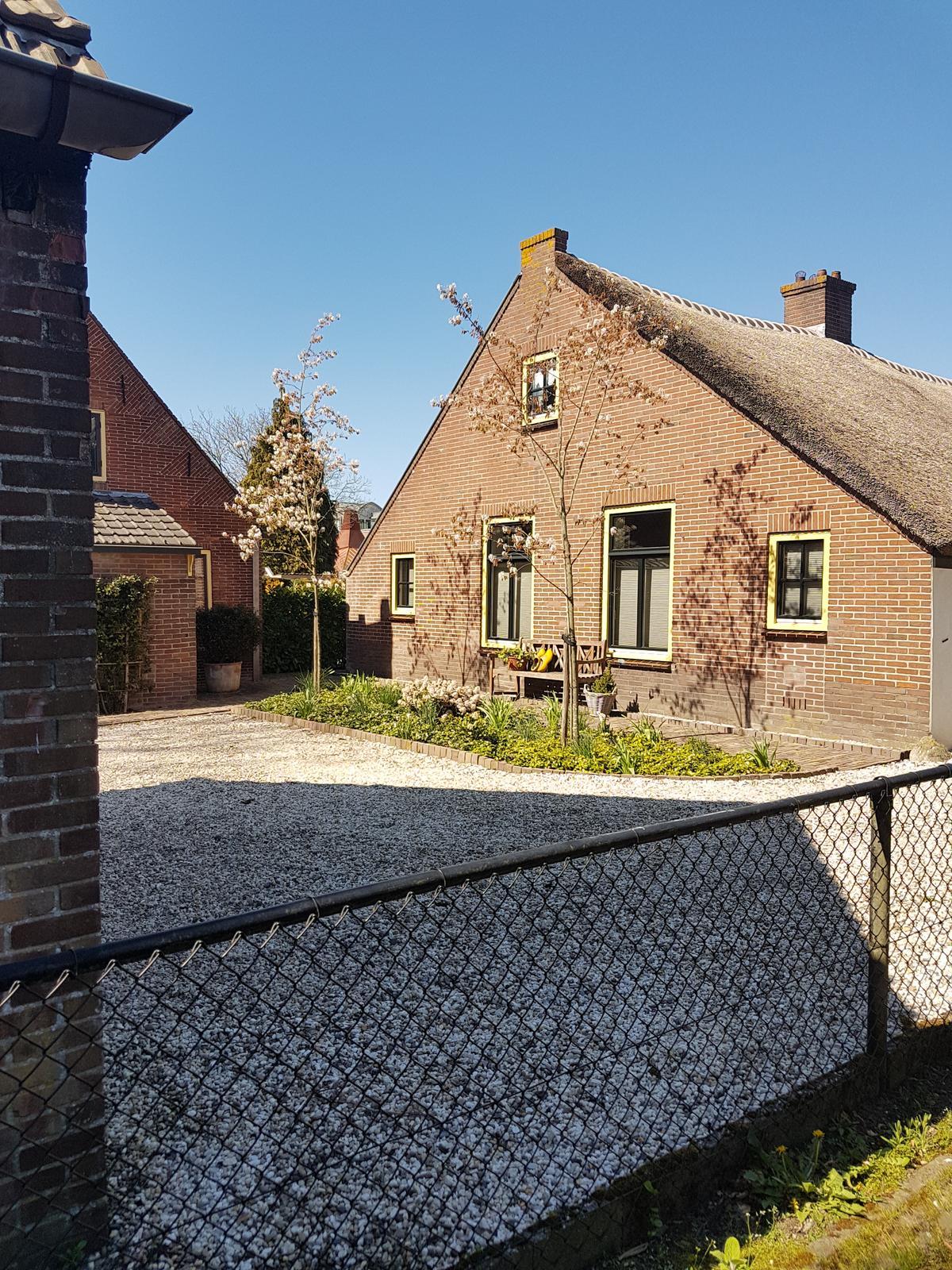 Holandsko - Obrázek č. 21