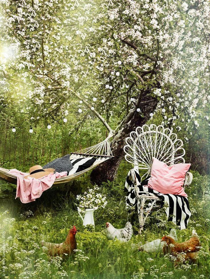 Letný sen aj inšpirácia - Obrázok č. 1