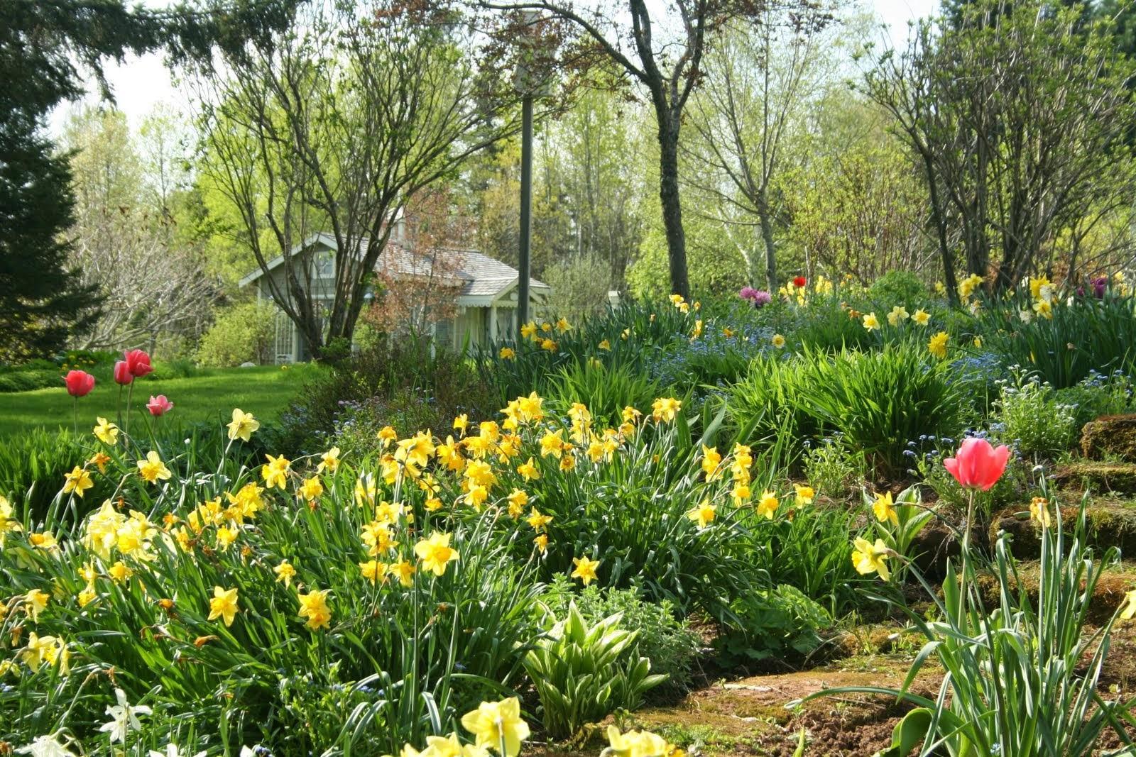 Vidiecke záhrady - inšpirácie - Obrázok č. 9