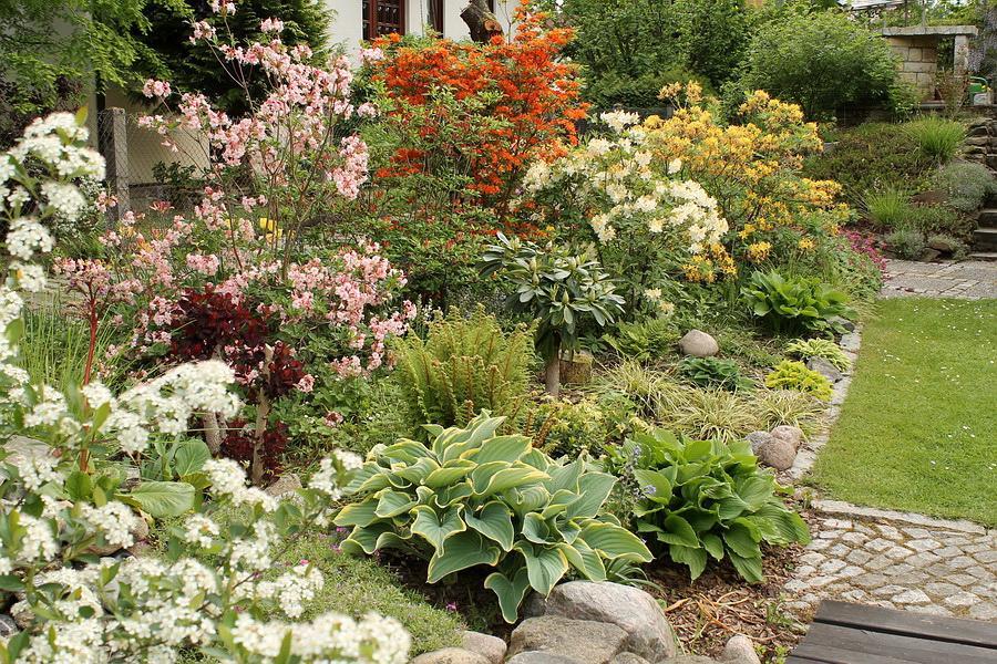Vidiecke záhrady - inšpirácie - Obrázok č. 28