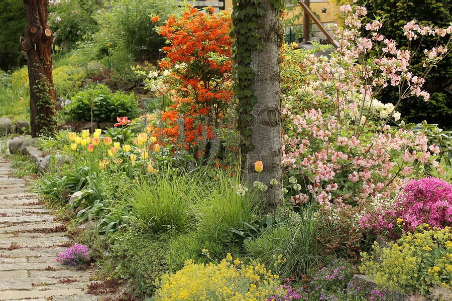 Vidiecke záhrady - inšpirácie - Obrázok č. 29