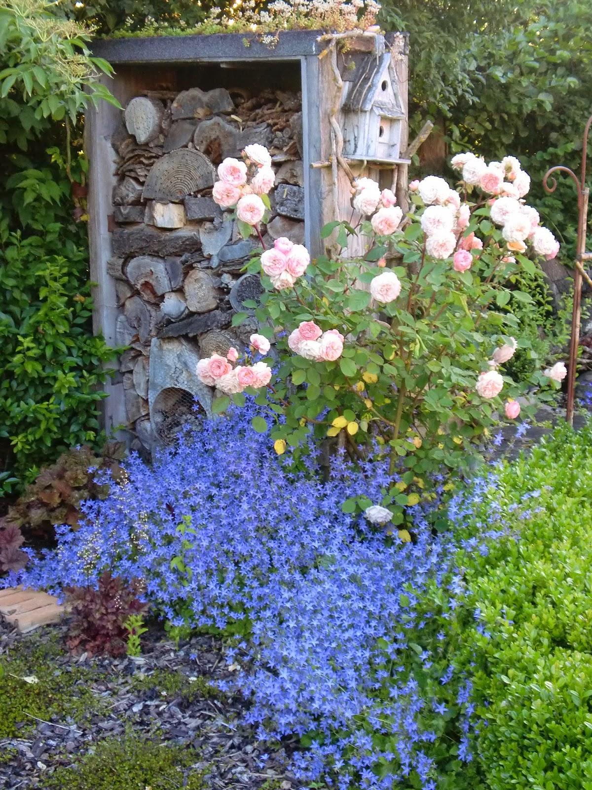 Vidiecke záhrady - inšpirácie - Obrázok č. 31