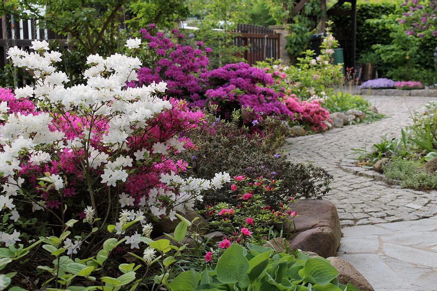 Vidiecke záhrady - inšpirácie - Obrázok č. 33