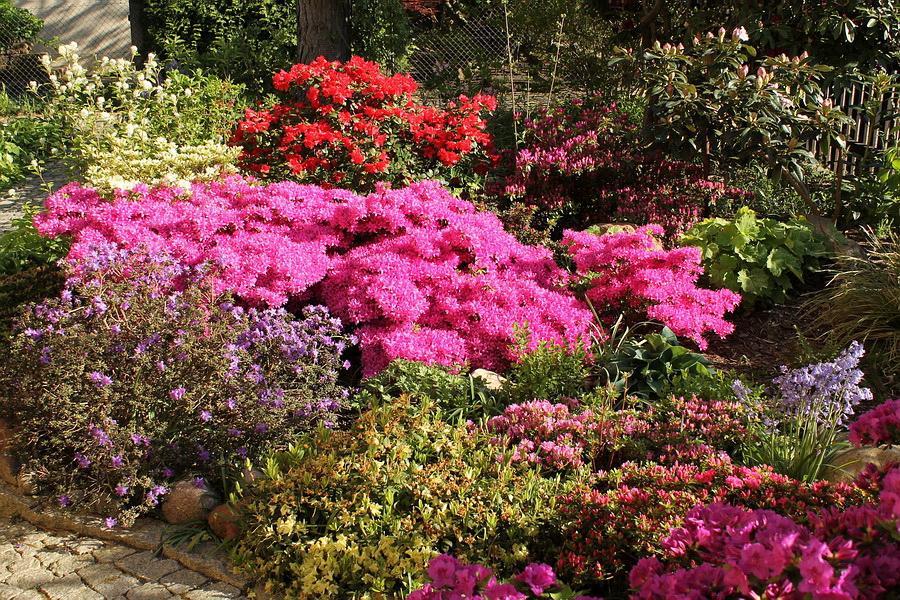 Vidiecke záhrady - inšpirácie - Obrázok č. 34