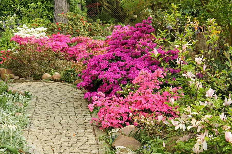 Vidiecke záhrady - inšpirácie - Obrázok č. 36