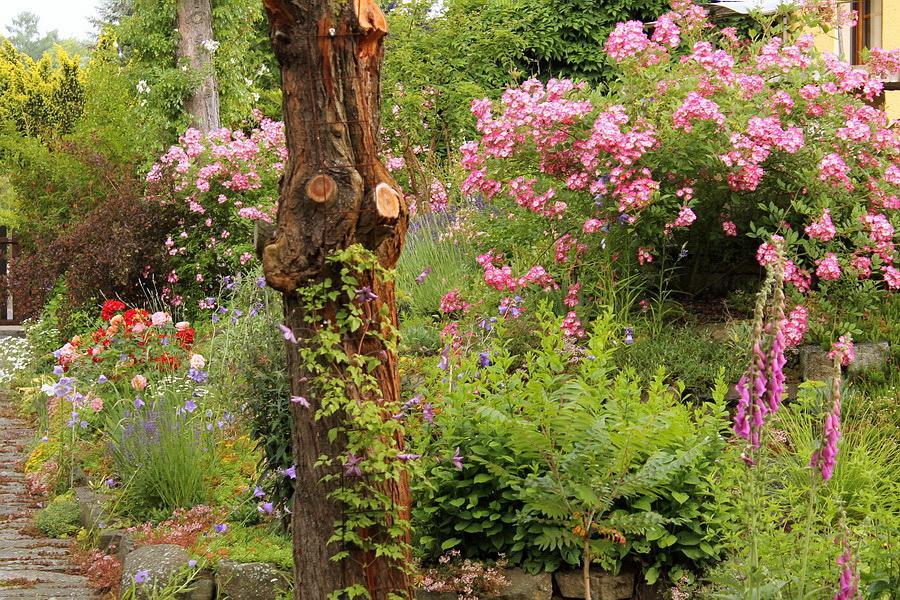 Vidiecke záhrady - inšpirácie - Obrázok č. 43