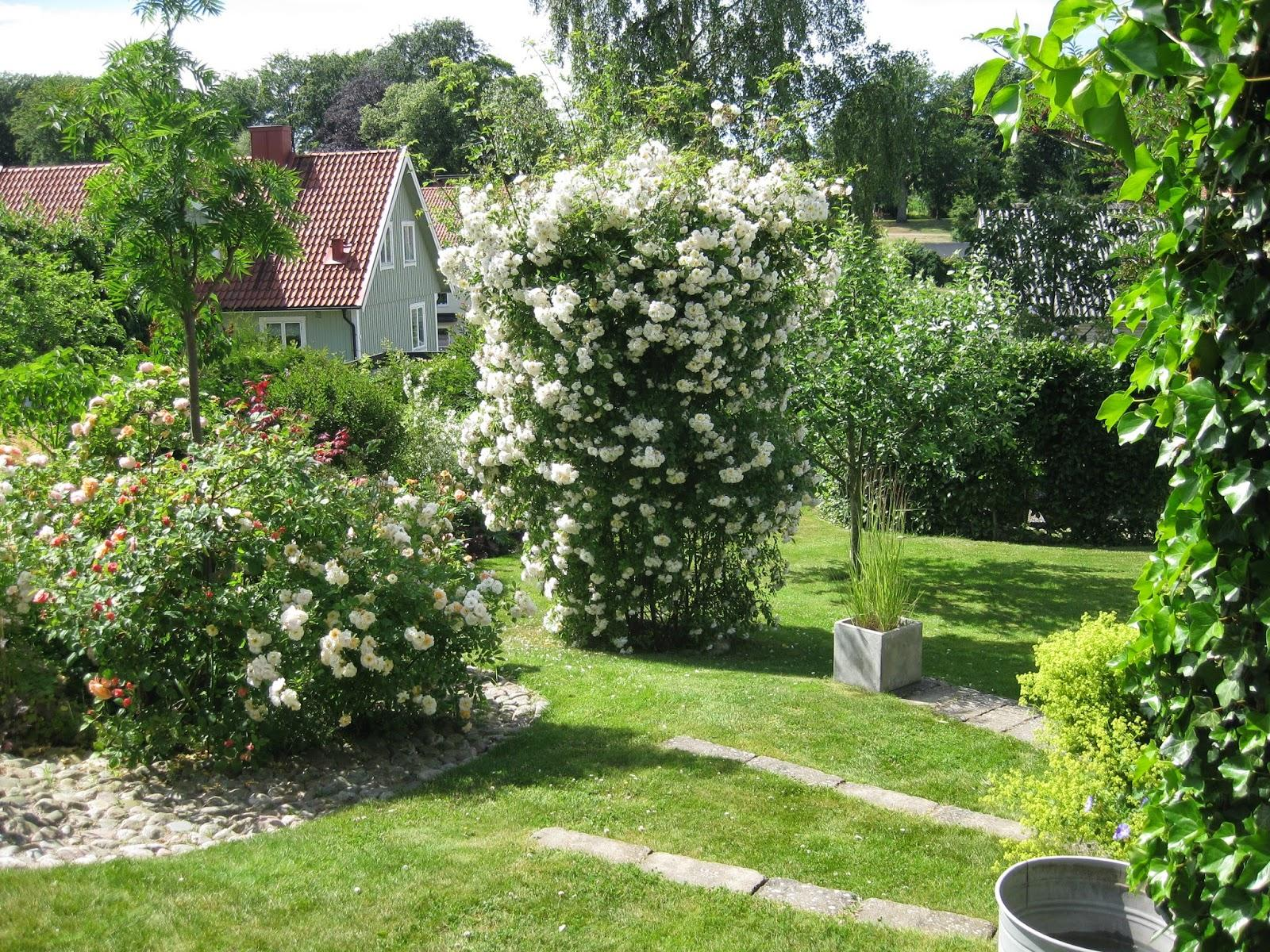 Vidiecke záhrady - inšpirácie - Obrázok č. 48