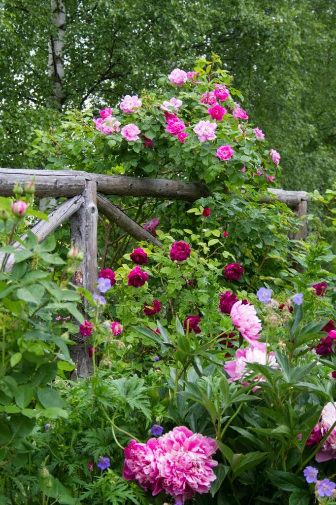 Vidiecke záhrady - inšpirácie - Obrázok č. 55