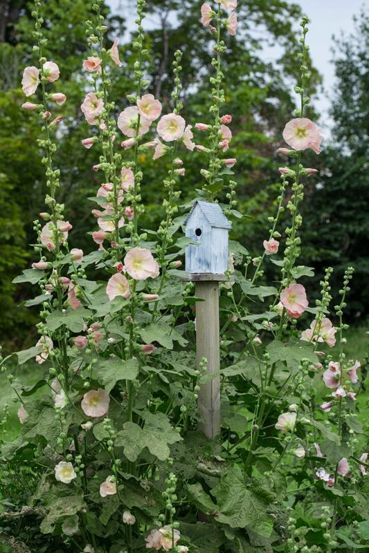 Vidiecke záhrady - inšpirácie - Obrázok č. 58