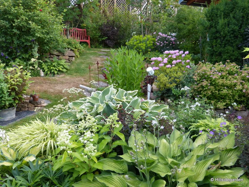 Vidiecke záhrady - inšpirácie - Obrázok č. 66