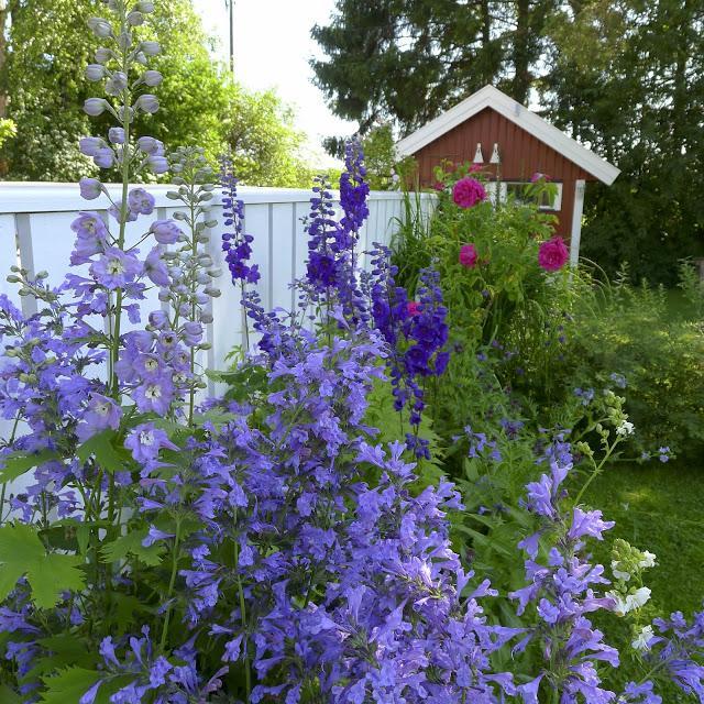 Vidiecke záhrady - inšpirácie - Obrázok č. 68
