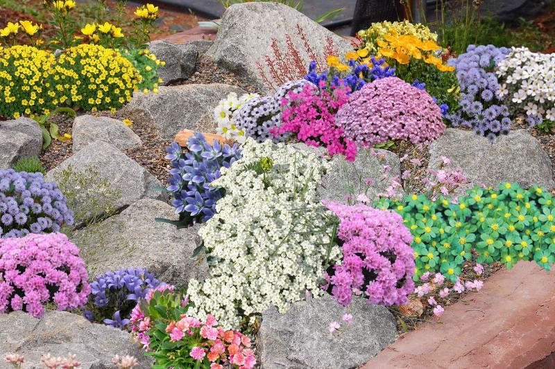 Vidiecke záhrady - inšpirácie - Obrázok č. 72
