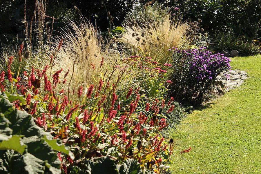 Vidiecke záhrady - inšpirácie - Obrázok č. 85